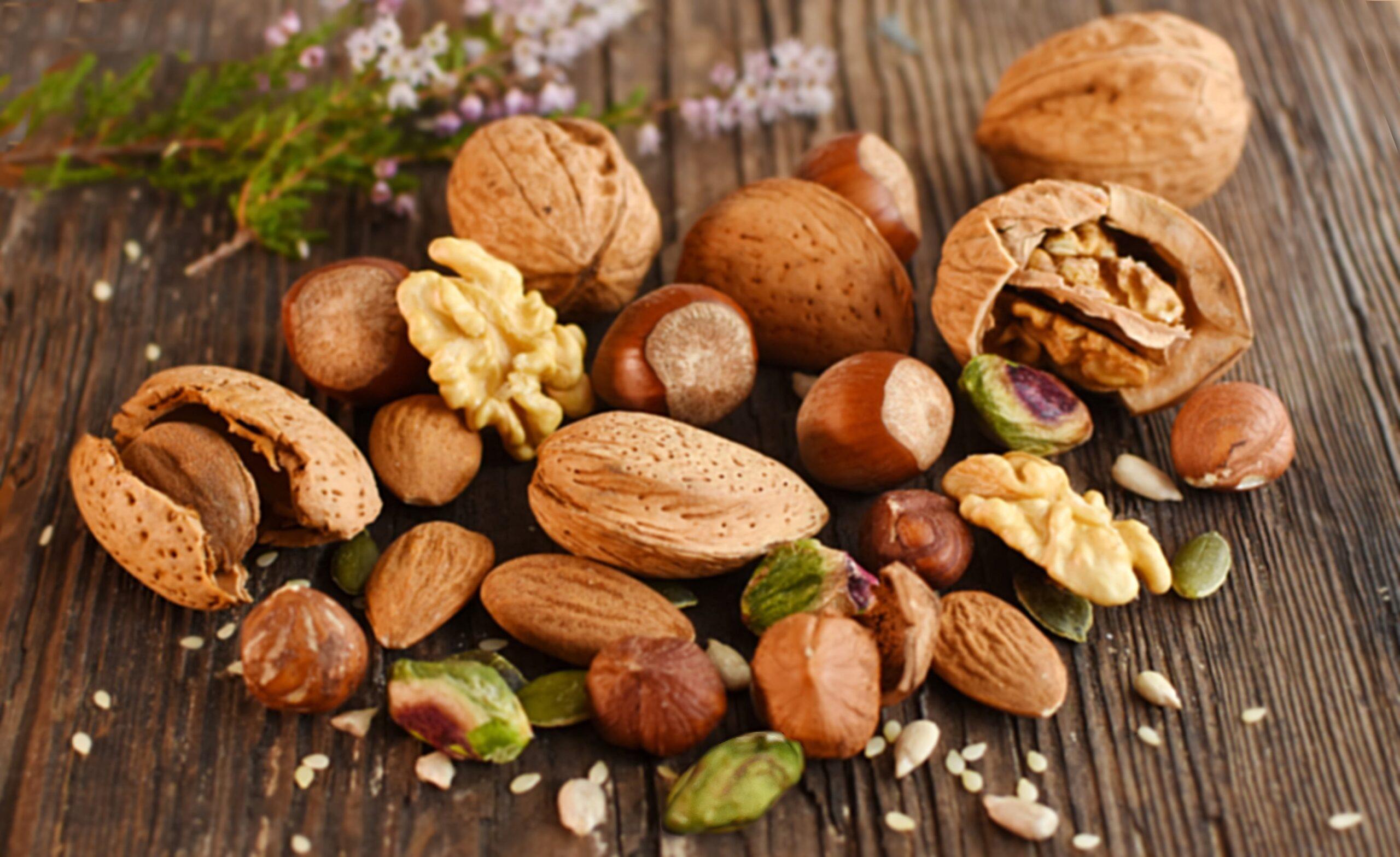 Fruits Oléagineux
